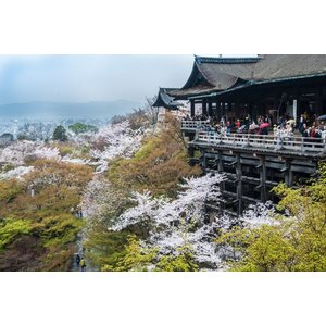 京都清水寺ポストカード舞台|photoroom-g