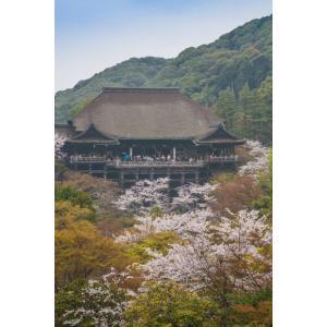 清水寺京都ポストカード|photoroom-g