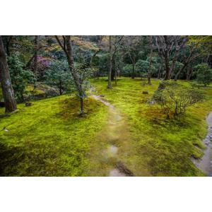 銀閣の庭ポストカード|photoroom-g