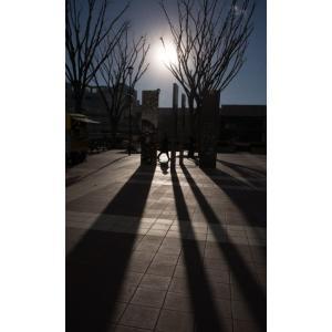 影ポストカード|photoroom-g