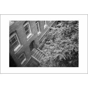 雨の日の煉瓦館モノクロポストカード|photoroom-g