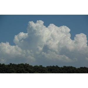 夏の雲ポストカード|photoroom-g