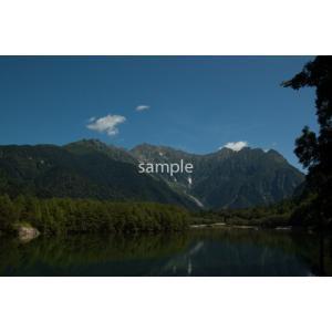 枯れ木・上高地、焼岳ポストカード|photoroom-g