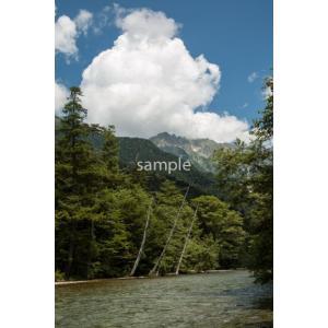 上高地の川(上高地)ポストカード|photoroom-g