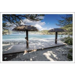 小笠原宮之浜パラソルポストカード|photoroom-g