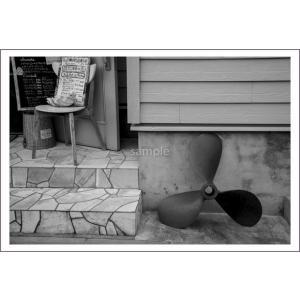小笠原街中のショップのポストカード|photoroom-g