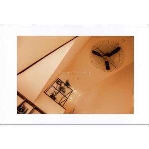 小笠原扇風機のポストカード|photoroom-g