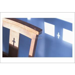 小笠原の光と影ポストカード|photoroom-g
