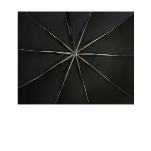 フォックスアンブレラズ 傘 折り畳み 10 Rib TEL4 Style ワンギー|piazza|03
