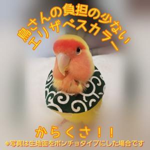 鳥 エリザベスカラー(唐草) 1枚・3サイズ・緑・赤