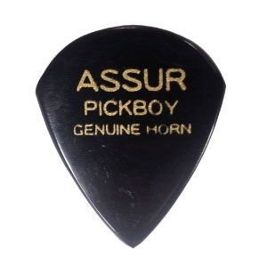 PICKBOY ギター ピック アシュラピック ホーン GP-AS/1 pick-store