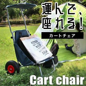 キャリーカート キャリーワゴン バギー カー チェアー 折りたたみ 台車 耐荷重120kg|pickupplazashop