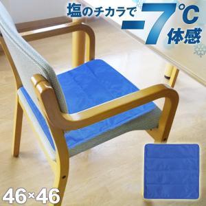 塩の力で冷やす!ペットの夏暑さ対策品としてもぴったりの冷却マットです。  簡単&スピーディー!敷くだ...