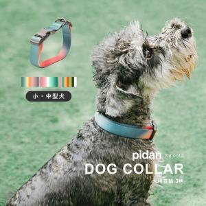 (犬用首輪 3柄) pidan ピダン 犬 1,690