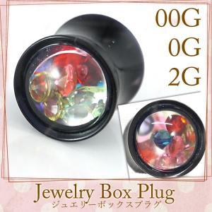 ボディピアス ジュエリーボックスプラグ 2G 0G 00G ボディーピアス piercing-nana
