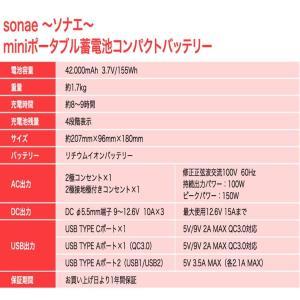 数量限定値下げ)50-C-1)ポータブル電源 大容量 42,000mAh/100W AC100V USB急速充電 保証1年 sonae-ソナエ- mini   防災|pika-q|17