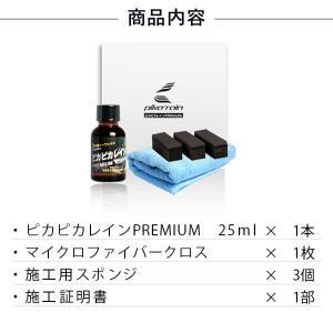 ガラスコーティング 車 ガラスコーティング剤 ピカピカレイン プレミアム 滑水性 洗車 カーワックス 送料無料 TOP-PREMIUM|pika2rain|13