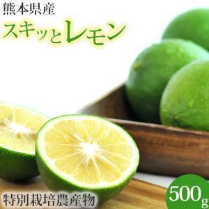 熊本県産 スキッとレモン 500g (特別栽培)(国産レモン)(マイヤーレモン)|pika831