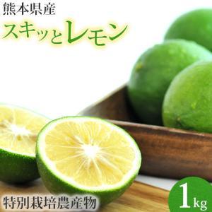 熊本県産 スキッとレモン 1Kg (特別栽培)(国産レモン)(マイヤーレモン)|pika831