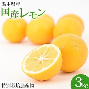 (送料無料)熊本県産 スキッとレモン 3Kg(特別栽培)(マイヤーレモン)|pika831