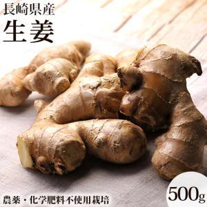しゃっきしゃきっ!農薬を使用しないで栽培した、とっても風味と香りの良い路地栽培の生姜です。