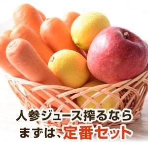 人参 にんじん ジュース りんご レモン 無農薬にんじんジュース 定番セット にんじん5kg+りんご...