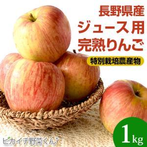 樹上完熟なので甘みが違う!「長野県産」りんご 1Kg(りんご 訳あり)(特別栽培農産物)|pika831