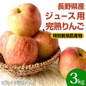 樹上完熟なので甘みが違う!「長野県産」りんご 3Kg (りんご 訳あり)(特別栽培農産物)|pika831