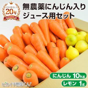 にんじん 人参 送料無料 野菜セット 無農薬にんじん10kg+慣行栽培レモン1kg