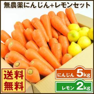 (送料無料)無農薬にんじん野菜セット(無農薬にんじん5kg+レモン2kg)(コールドプレスジュース用) (朝食キット)|pika831