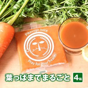 葉っぱ付きまるごと冷凍にんじんジュース 【4箱】(人参ジュース) pika831