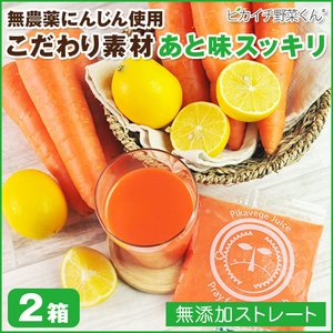 にんじんレモン冷凍ジュース 2箱 (100c×60p)(冷凍)(にんじんジュース)(無農薬人参) pika831