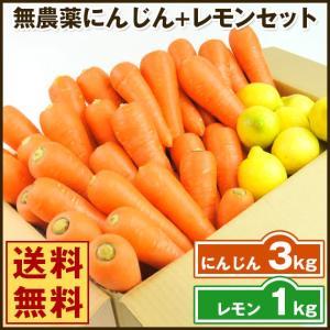 (送料無料)無農薬にんじん野菜セット(無農薬にんじん3kg+レモン1kg)(コールドプレスジュース用) (朝食キット)|pika831