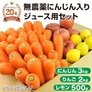 (送料無料)無農薬にんじん野菜セット(無農薬にんじん3kg+りんご2kg+レモン500g)(にんじんジュース キット)(コールドプレスジュース用) (朝食キット) pika831
