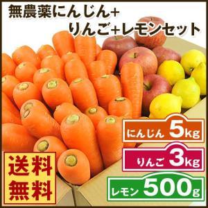 (送料無料)無農薬にんじん野菜セット(無農薬にんじん5kg+りんご3kg+レモン500g)(にんじんジュース キット)(コールドプレスジュース用) (朝食キット) pika831