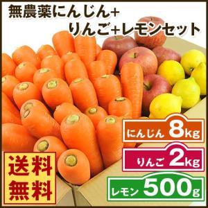(送料無料)無農薬にんじん野菜セット(無農薬にんじん8kg+りんご2kg+レモン500g)(にんじんジュース キット)(コールドプレスジュース用) (朝食キット) pika831