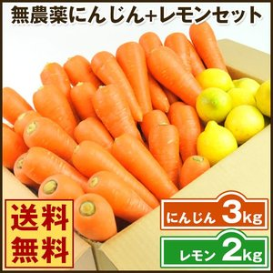 (送料無料)無農薬にんじん野菜セット(無農薬にんじん3kg+レモン2kg)(コールドプレスジュース用) (朝食キット)|pika831
