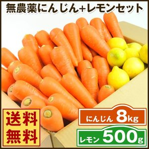 (送料無料)無農薬にんじん野菜セット(無農薬にんじん8kg+レモン500g)(コールドプレスジュース用) (朝食キット)|pika831