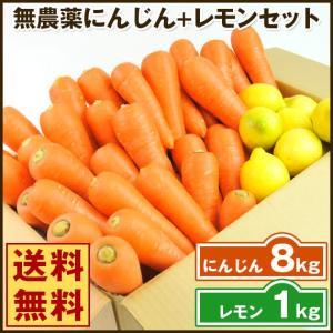 (送料無料)無農薬にんじん野菜セット(無農薬にんじん8kg+レモン1kg)(コールドプレスジュース用) (朝食キット)|pika831