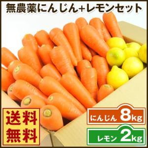 (送料無料)無農薬にんじん野菜セット(無農薬にんじん8kg+レモン2kg)(コールドプレスジュース用) (朝食キット)|pika831