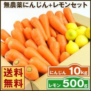 (送料無料)無農薬にんじん野菜セット(無農薬にんじん10kg+レモン500g)(コールドプレスジュース用) (朝食キット)|pika831