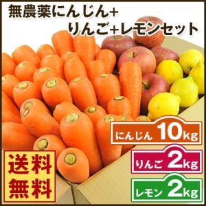 (送料無料)無農薬にんじん野菜セット(無農薬にんじん10kg+りんご2kg+レモン2kg)(にんじんジュース キット)(コールドプレスジュース用) (朝食キット) pika831
