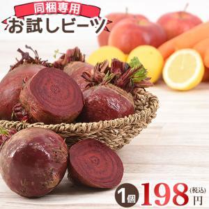 1個から買えちゃう!同梱専用のお試し用ビーツです!静岡県産特別栽培農産物となります。ビーツは別名『奇...