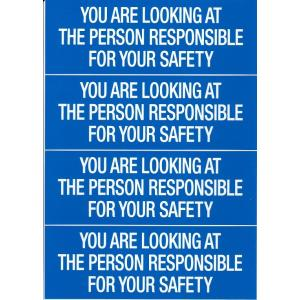 YOU ARE LOOKING AT THE PERSON RESPONSIBLE FOR YOUR SAFETY Decal|pilothousefs-cima