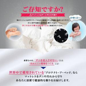 Protect-A-Bed (プロテクト・ア・ベッド) ミラクルフィット・マットレスプロテクター・プレミアム [シングル]|piloxs|05