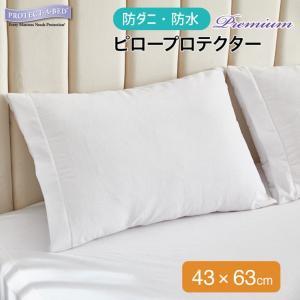 Protect-A-Bed (プロテクト・ア・ベッド) 枕カバー アレルジップ ピロープロテクター プレミアム 43x63cm|piloxs