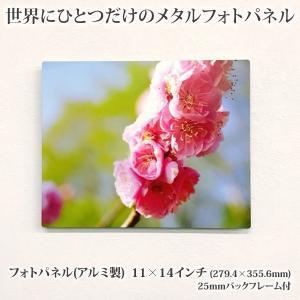 【オリジナルプリント】アルミ製フォトパネル 11×14インチ【25mmバックフレーム付】 メタルプリント アルミプレート 写真プリント 写真パネル インテリア