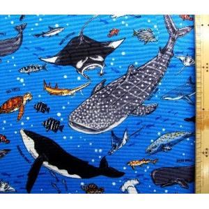 プリント 生地 海の王者たち ( ブルー )kok-loa-49030-1-b-nk-2058