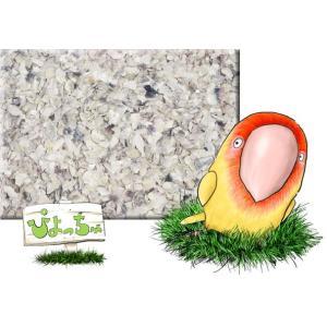ボレー粉 2.5kg×2|piyocyu-ash