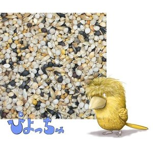 カナリヤ冬用ブレンド 500g×2 piyocyu-ash